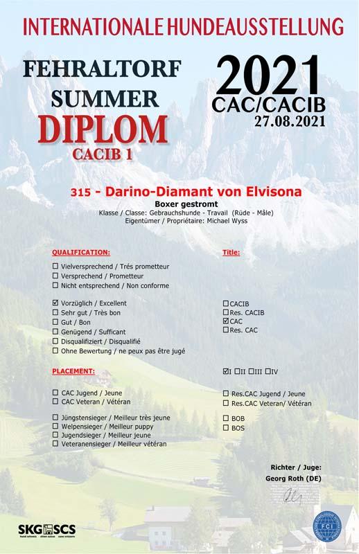 Certificate Darino V 1 CAC