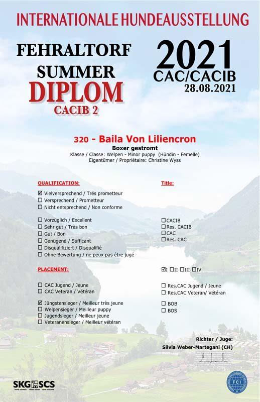 Certificate-Baila-V1