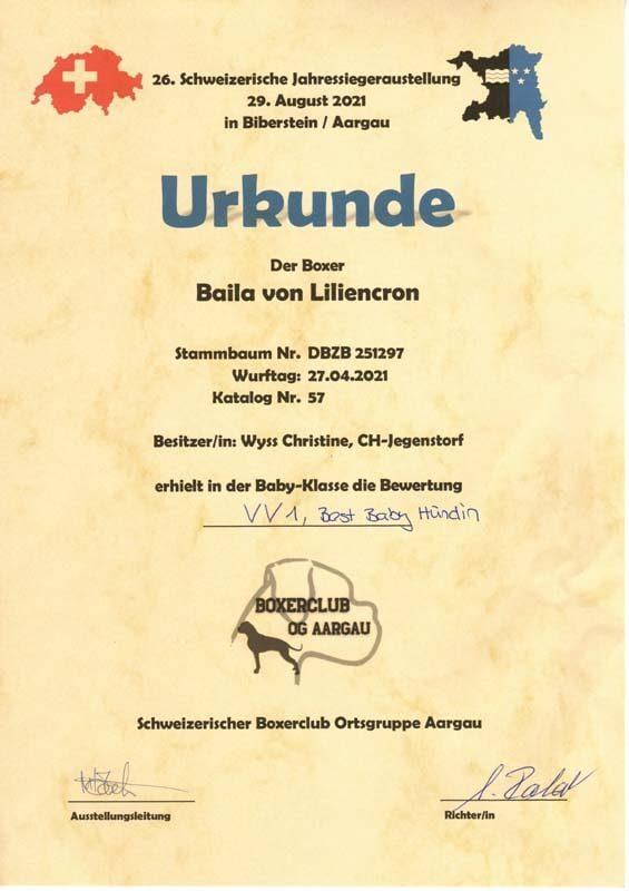 BEST-BABY2021-BAILA-VON-LILIENCRON-JAHRESSIEGERAUSTELLUNG-CH-VV1